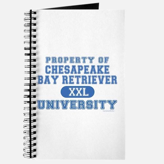 C.B.R. University Journal