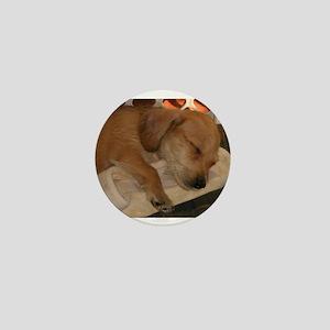 Sleepy Puppy Mini Button