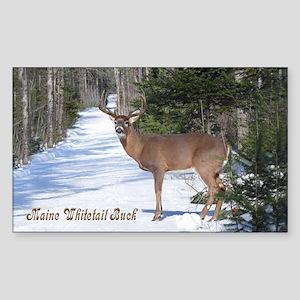 Winter Buck Rectangle Sticker