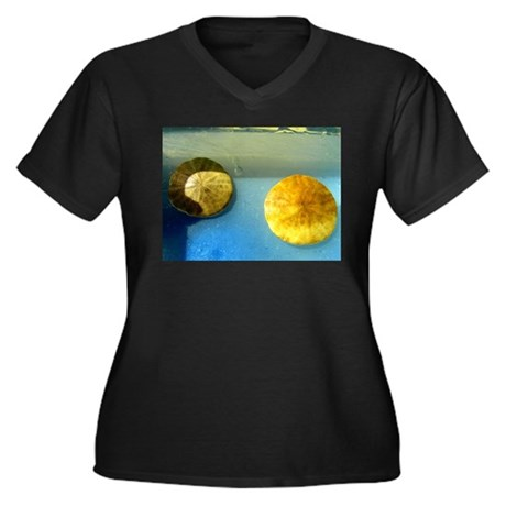 Sand Dollar Women's Plus Size V-Neck Dark T-Shirt