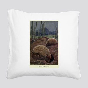 Vintage Armadillo Painting (1 Square Canvas Pillow