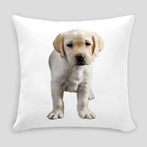 Smug Lab Everyday Pillow