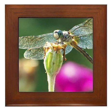 Smiley Face Dragonfly Framed Tile