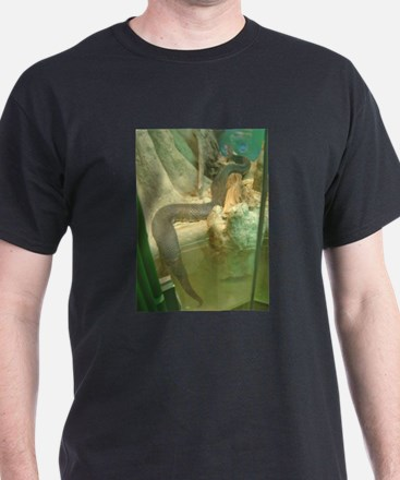 florida cottonmouth T-Shirt