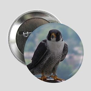Falcon Button