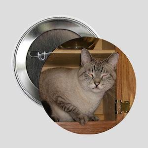 """Buddha Cat Peeka-Boo! 2.25"""" Button"""