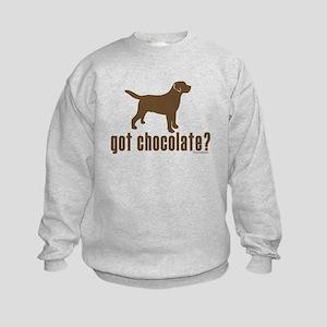 got chocolate lab? Kids Sweatshirt