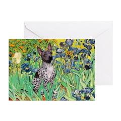 Irises-Am.Hairless T Greeting Cards (Pk of 10)