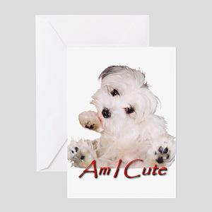 Chia Am I Cute Greeting Card