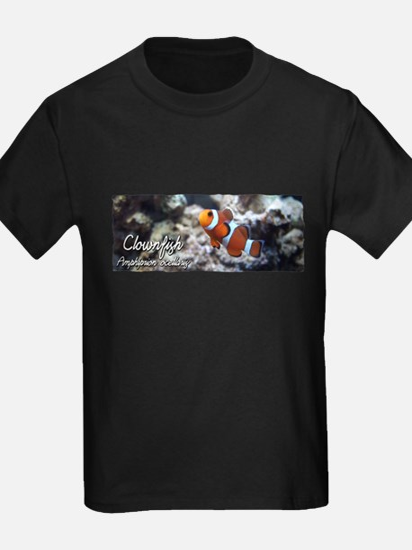 Ocellaris Clownfish T
