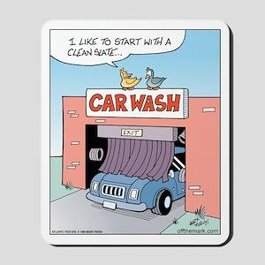 Bird Car Wash Mousepad