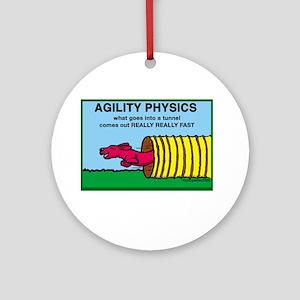 Agility Physics Ornament (Round)