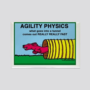 Agility Physics Rectangle Magnet