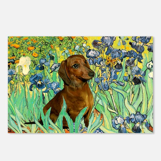 Irises & Dachshund Postcards (Package of 8)