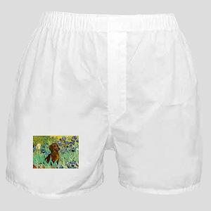 Irises & Dachshund Boxer Shorts