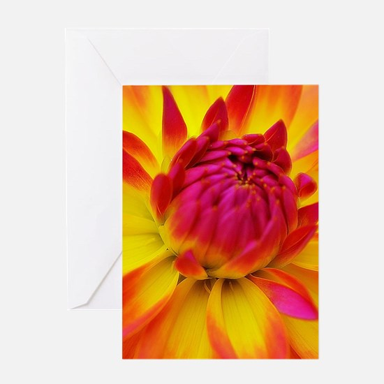 Ecstatic Greeting Cards