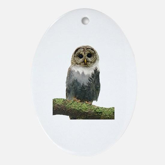 Cute Owl lover Oval Ornament