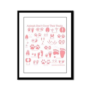 Pink Tracks Framed Panel Print