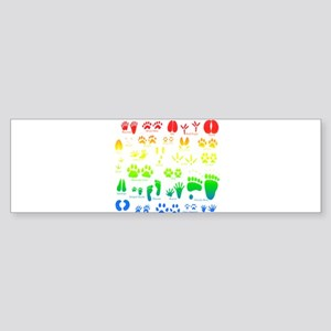 Colorful Rainbow Bumper Sticker