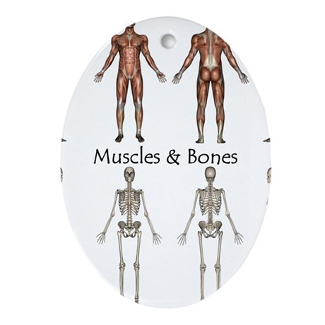 Muscles and Bones Oval Ornament