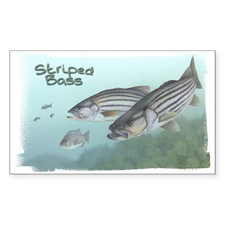 Striped Bass, Fish Rectangle Sticker
