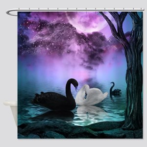 Wonderful black and white swan in the night Shower