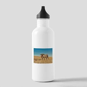Walking Horse Stainless Water Bottle 1.0L