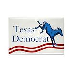 Texas Democrat Rectangle Magnet