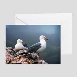 Sea Gulls of Maine Greeting Cards (Pk of 10)