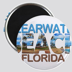 Summer clearwater- florida Magnets