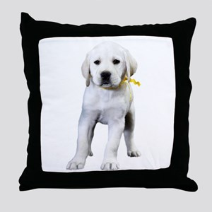 The Tilted Lab Throw Pillow