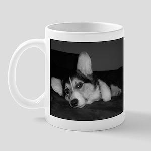 Tri Pembroke Corgi. . .Reflec Mug