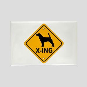 Beagle X-ing Rectangle Magnet (10 pack)