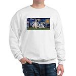 Starry Night / Min Schnauzer Sweatshirt