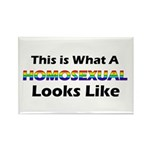 Homosexual Rectangle Magnet (10 pack)