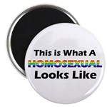 """Homosexual 2.25"""" Magnet (100 pack)"""