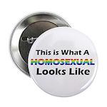 """Homosexual 2.25"""" Button"""