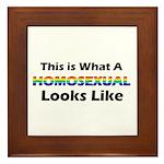 Homosexual Framed Tile