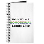 Homosexual Journal