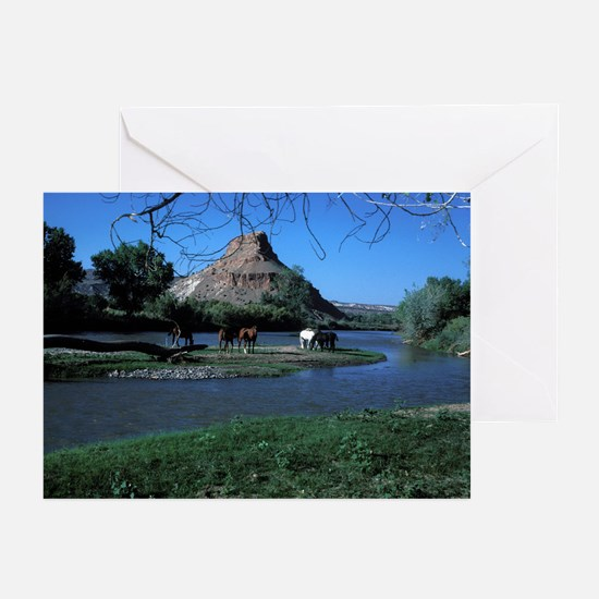 Horse Island, Abiquiu, NM 1980  (6 Notecards)