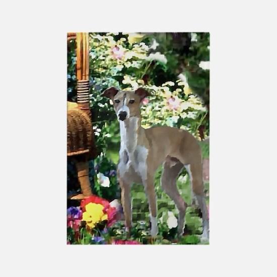 Italian Greyhound Art Rectangle Magnet (10 pack)
