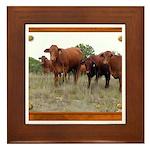 Cattle Framed Tile