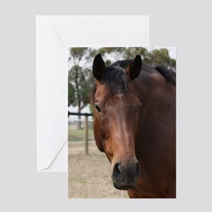 Silent Witness Greeting Cards