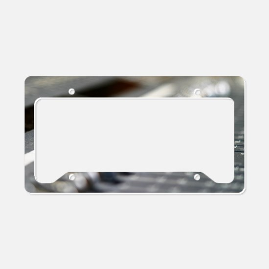 Funny Radio controlled License Plate Holder