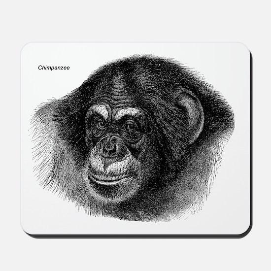 Chimpanzee Monkeys Mousepad