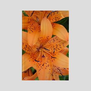 Orange Lillly Rectangle Magnet
