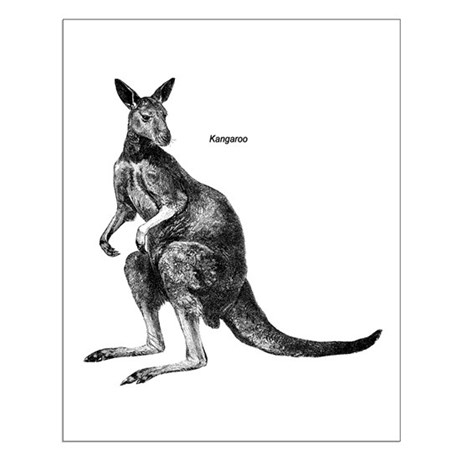 Kangaroo Posters by 1withnature