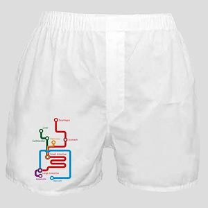 Gastrointestinal Subway Map Boxer Shorts