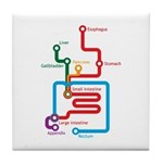 Gastrointestinal Subway Map Tile Coaster