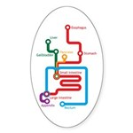 Gastrointestinal Subway Map Oval Sticker
